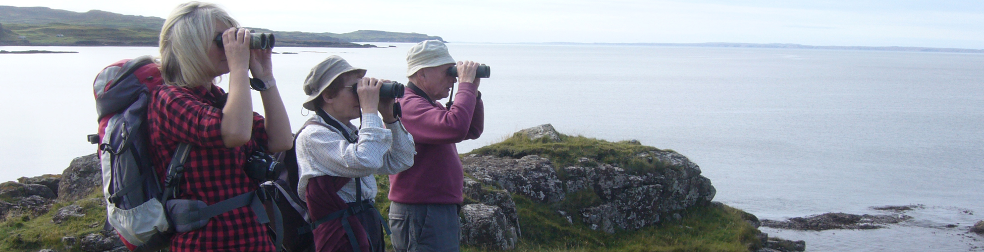 Wildlife Watching on Mull